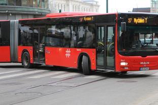 Buss. Foto