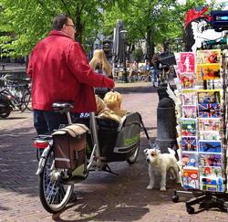 Syklisme. foto.