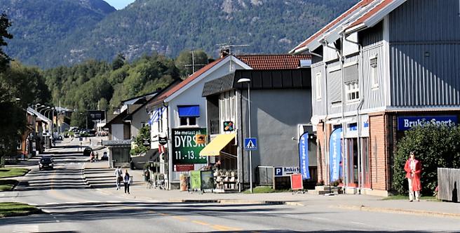 Hovedgata i Bø. Foto: Sindre Flø.