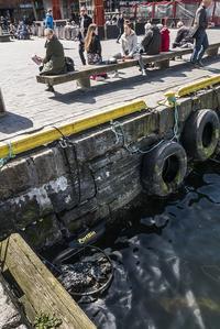 Bergen og Omland Havnevesen har plassert en avfallssamler innerst i havnebassenget ved Fisketorget.