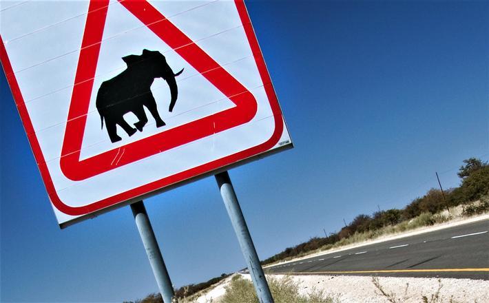 Se opp for elefanter … Et trafikkskilt i Namibia. Illustrasjonsfoto: Ben McRae/Scandinavian Stockphoto.
