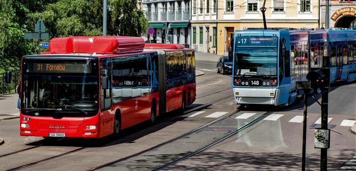 Bussen, arbeidshest nummer én. Foto: Riding Fartein Rudjord / Ruter